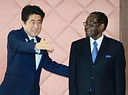 Abe introduces Mugabe at the TICADV summit